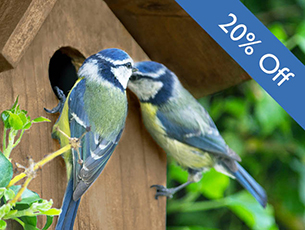 Wild Bird Care Promotion  - Woking