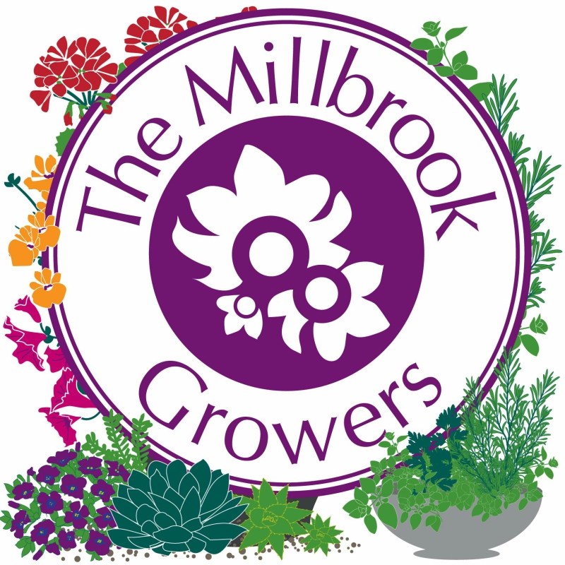 Millbrook Growers Talks Crowborough